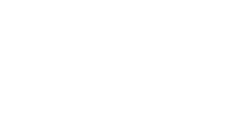 The Salt Network logo